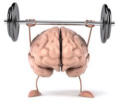 brain-bb
