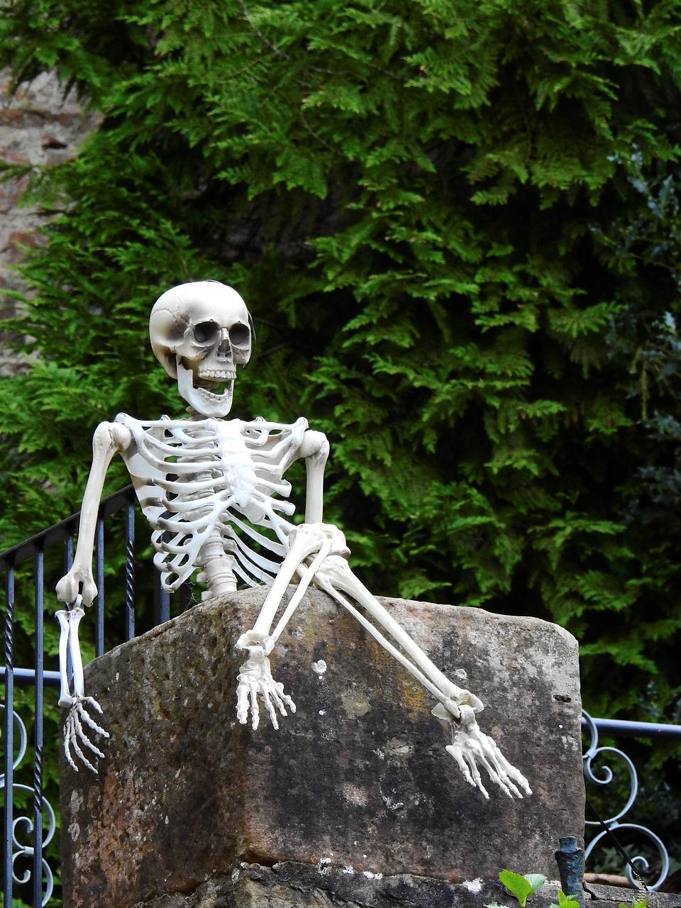 4 Exercises To Increase Bone Density